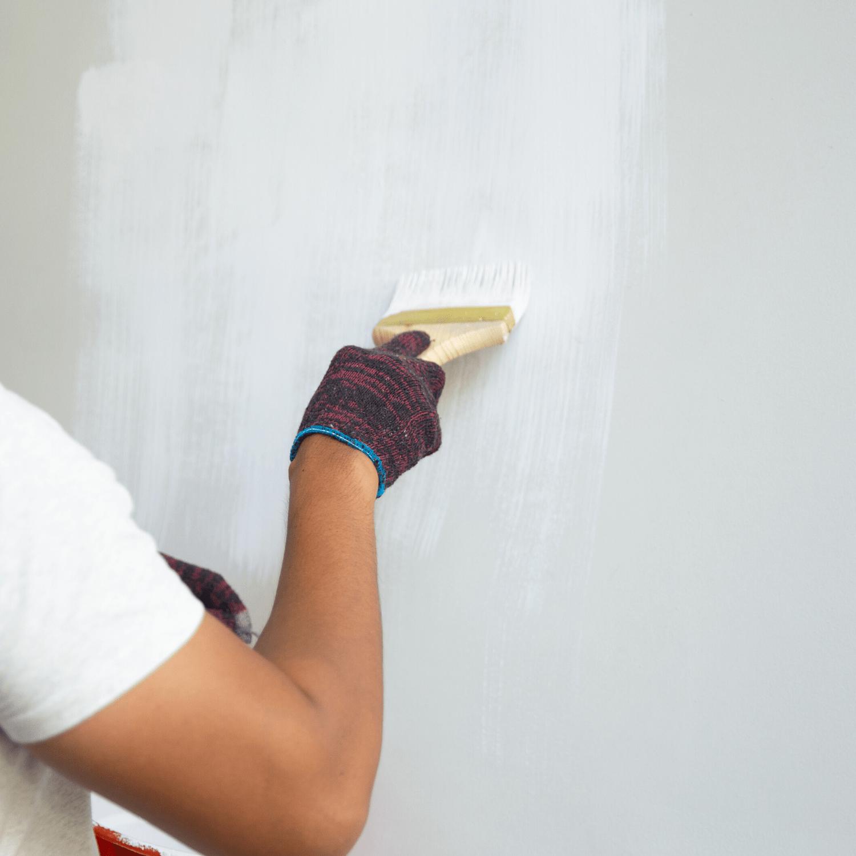 Repaint Services